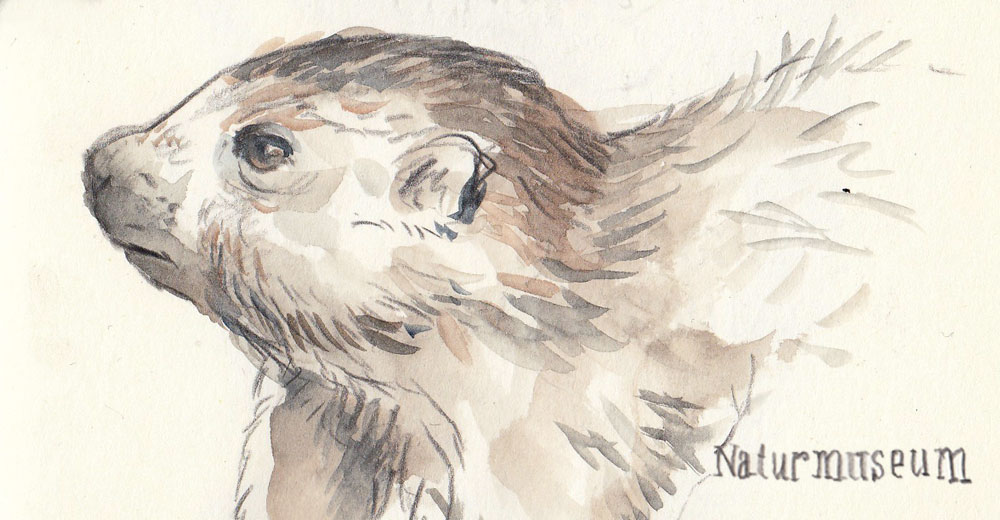 24. Februar 2019, Sketchcrawl in Luzern